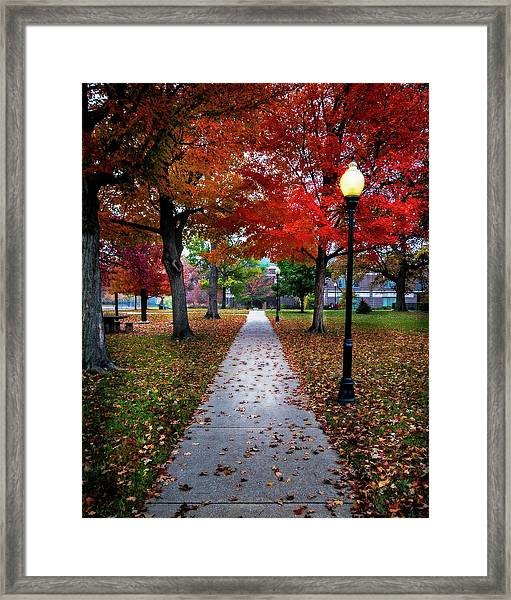Drury Fall Framed Print