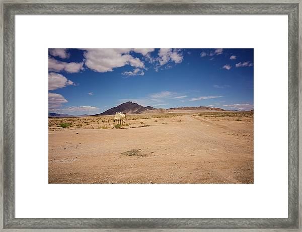 Dry And Oily Framed Print