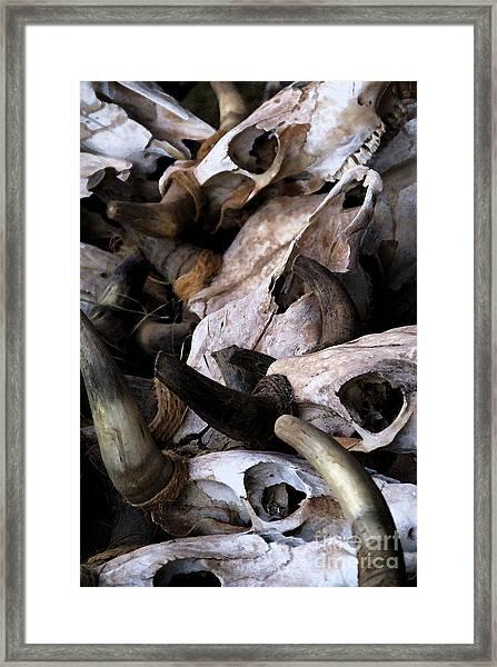 Dry As Bones Framed Print
