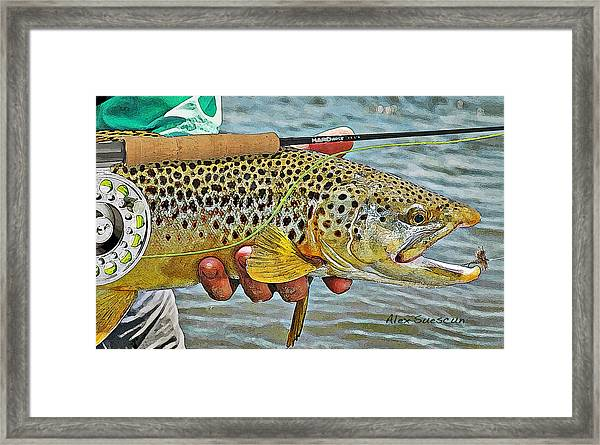 Dry Fly Brown Framed Print