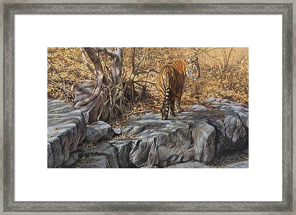 Dry, Hot And Irritable Framed Print