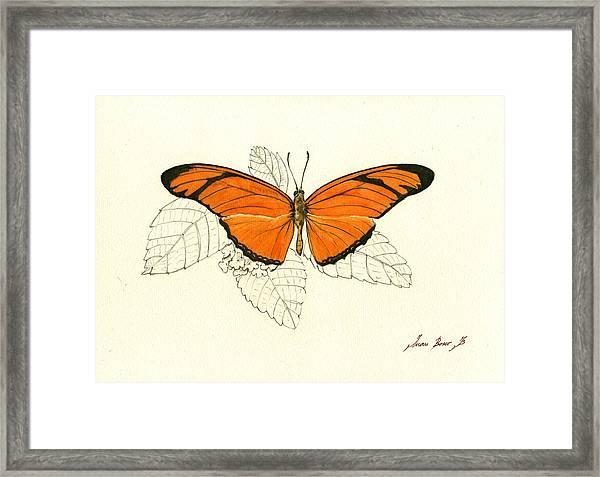 Dryas Iulia, Orange Julia Butterfly Framed Print