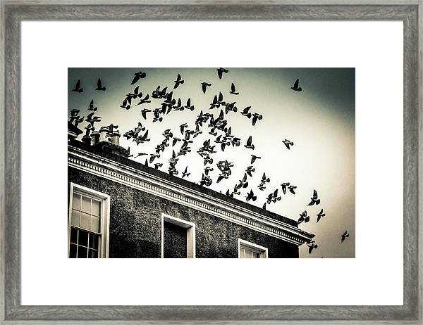 Flight Over Oscar Wilde's Hood, Dublin Framed Print