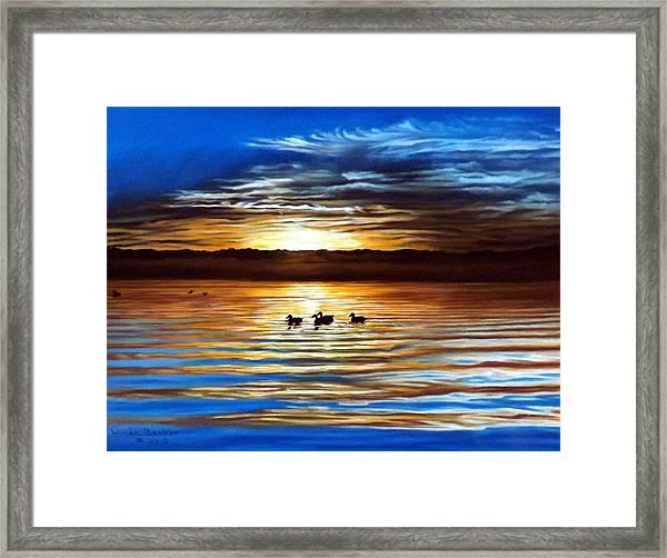 Ducks On Clear Lake Framed Print