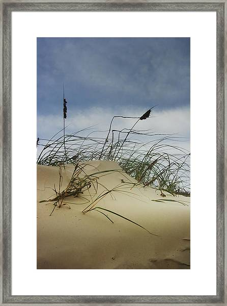 Dune And Beach Grass Framed Print