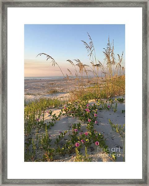 Dune Bliss Framed Print