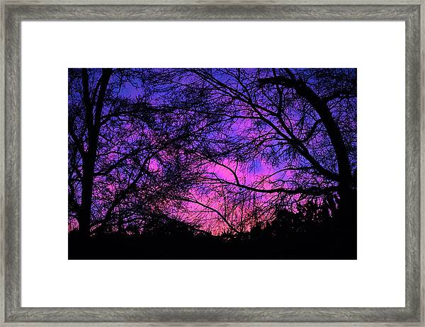 Dusk And Nature Intertwine Framed Print