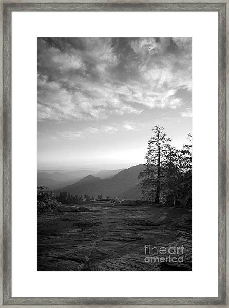 Dusk In Sequoia Framed Print