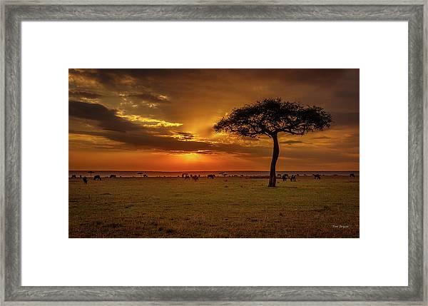 Dusk Over  The Serengeti Framed Print