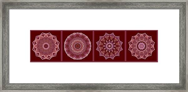 Dusty Rose Mandala Fractal Panel Framed Print