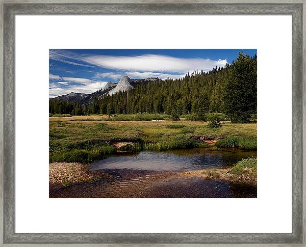 Framed Print featuring the digital art Dusy Meadow  No 10 by Visual Artist Frank Bonilla