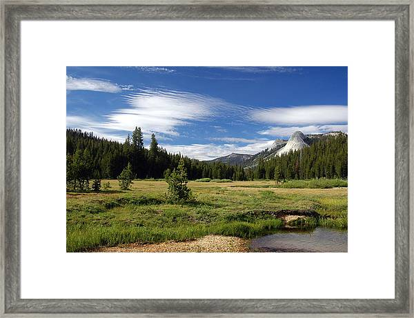 Framed Print featuring the digital art Dusy Meadow by Visual Artist Frank Bonilla