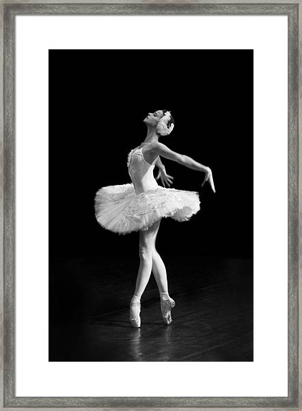 Dying Swan I Alternative Size Framed Print