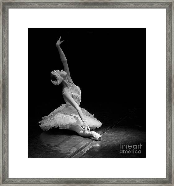 Dying Swan II. Framed Print