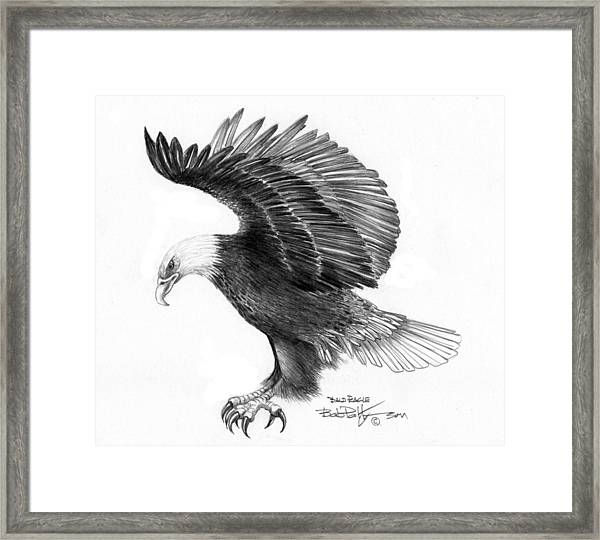Eagle Attacking Framed Print by Bob Patterson