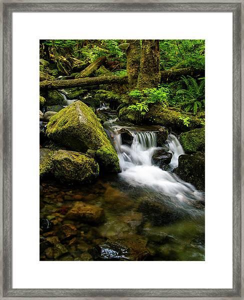 Eagle Creek Cascade Framed Print