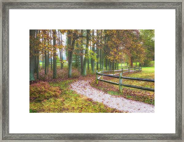 Early Autumn Stroll Framed Print