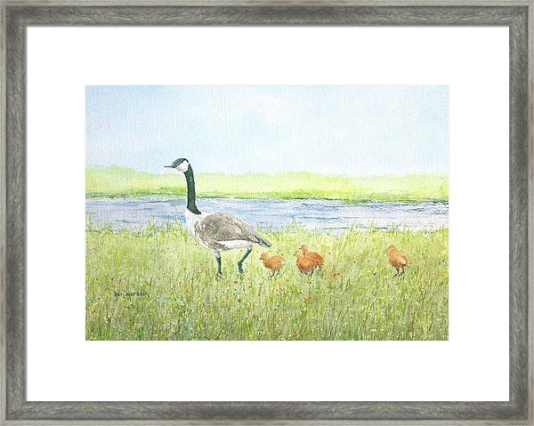 Early Instruction Framed Print
