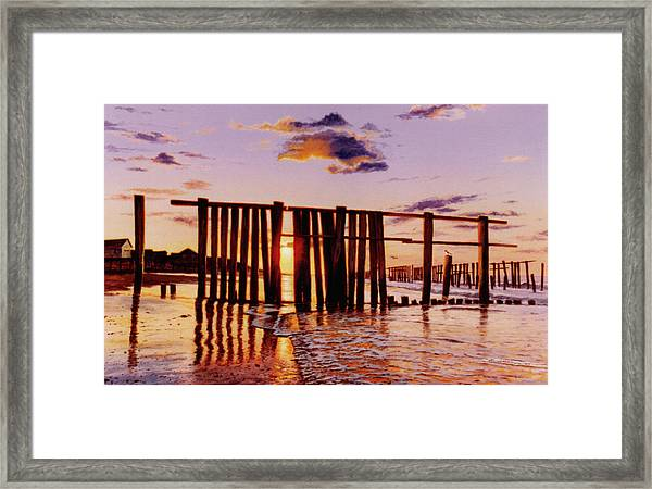 Early Morning Contrasts Framed Print