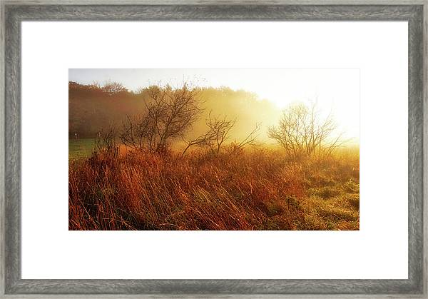 Early Morning Country Framed Print