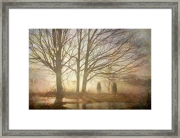 Early Morning Fog Framed Print