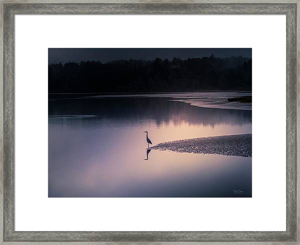 Early Morning Greeter Framed Print