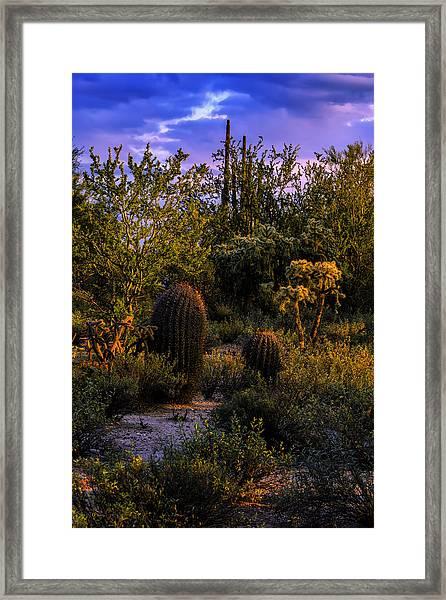 East Of Sunset V40 Framed Print