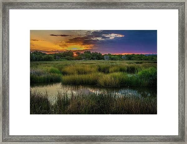 East Wetlands Sunrise Framed Print