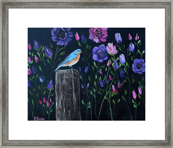 Eastern Blue Bird Framed Print