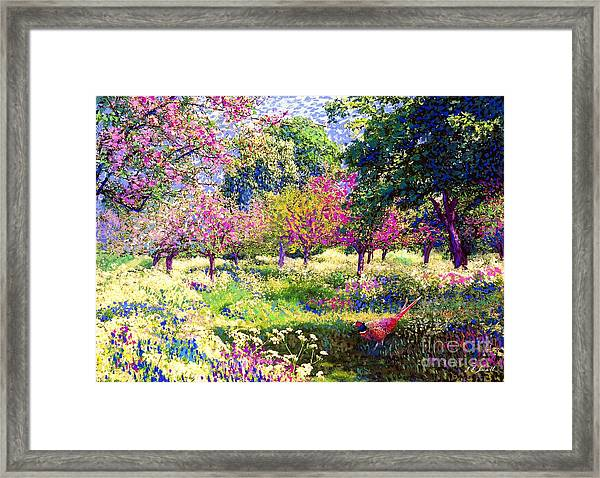 Echoes From Heaven, Spring Orchard Blossom And Pheasant Framed Print