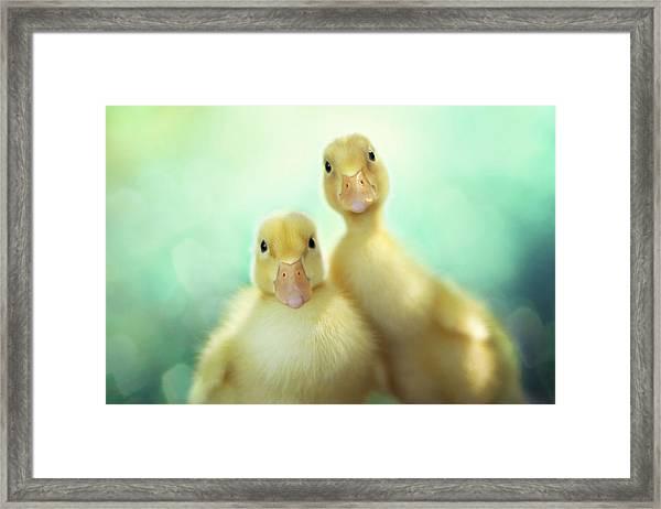 Edgar Loves Sally Framed Print