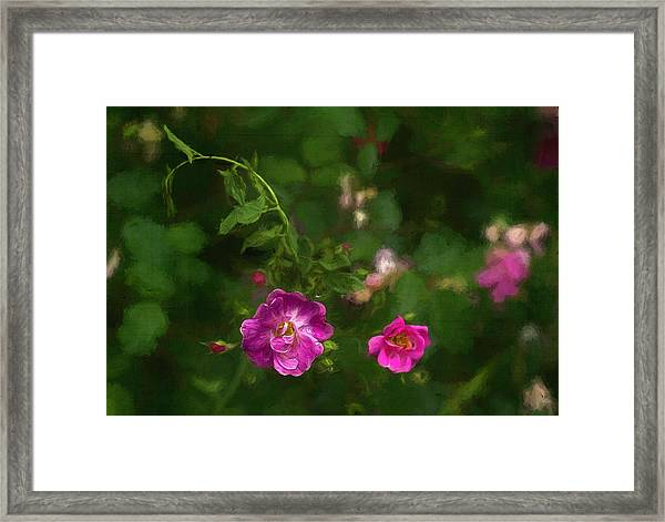 Edgefield Framed Print by Jeff Oates Photography
