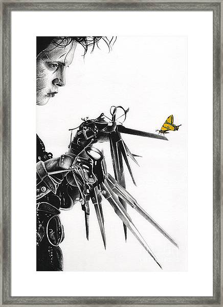Edward And A Butterfly Framed Print