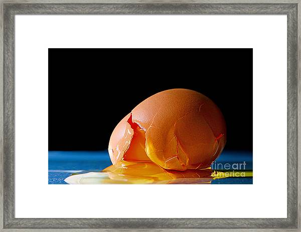 Egg Cracked Framed Print