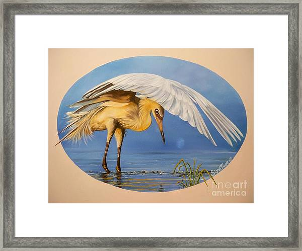 Chloe The  Flying Lamb Productions                  Egret Fishing Framed Print