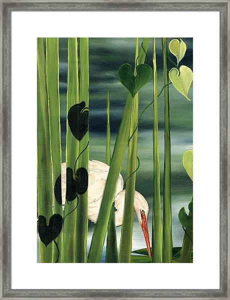 Egret In Reeds Framed Print
