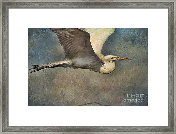 Egret Journey Framed Print
