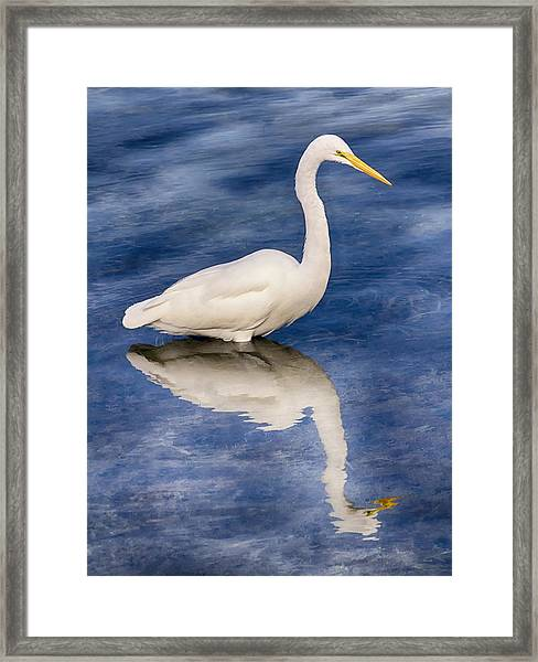 Framed Print featuring the photograph Egret Reflection On Blue by Bob Slitzan