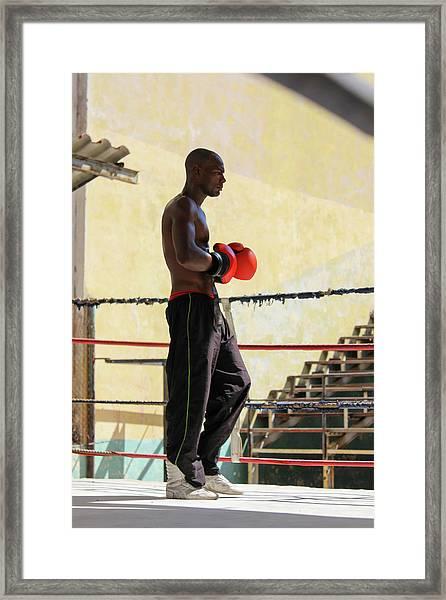El Boxeador Framed Print