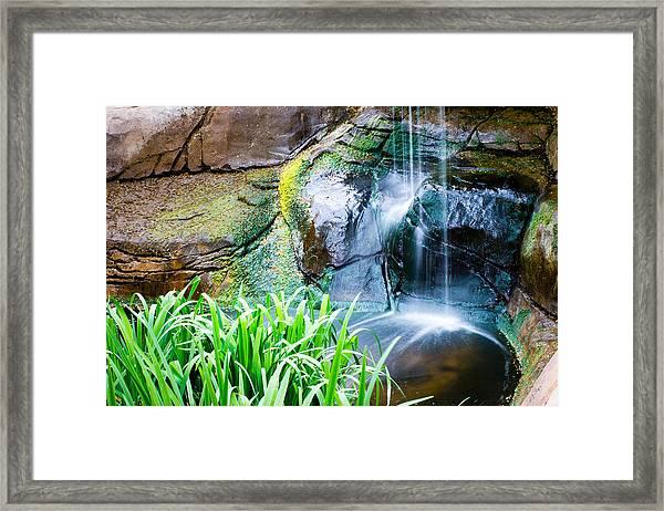 El Paso Zoo Waterfall Long Exposure Framed Print