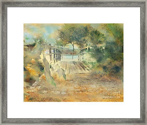 El Puente De Laxe Framed Print