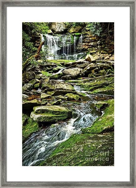 Elakala Falls At Blackwater Falls State Park Framed Print
