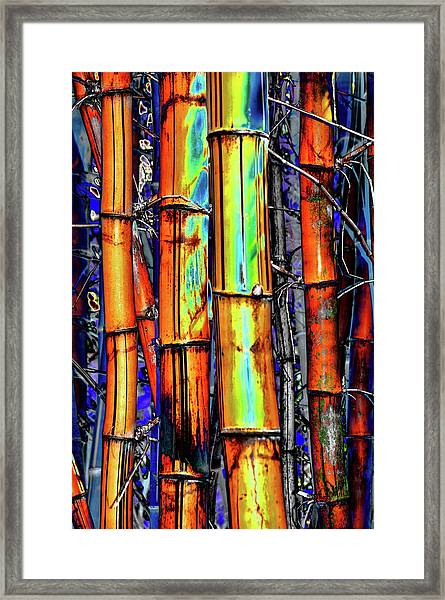 Electric Bamboo 3 Framed Print
