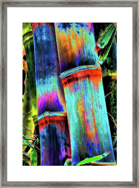 Electric Bamboo 5 Framed Print