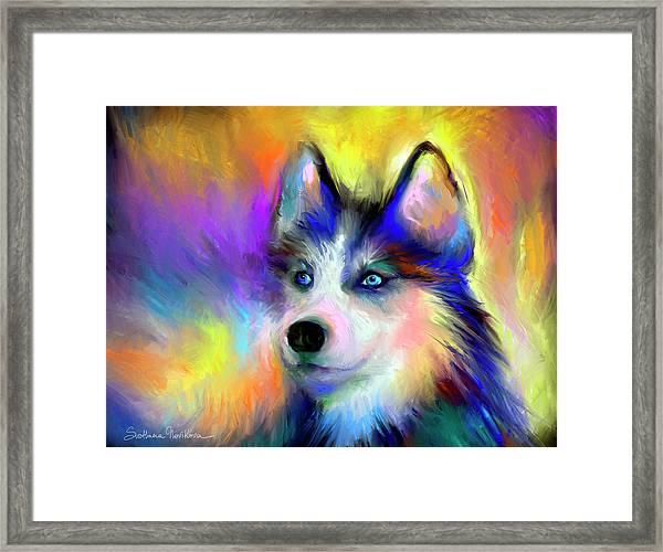 Electric Siberian Husky Dog Painting Framed Print