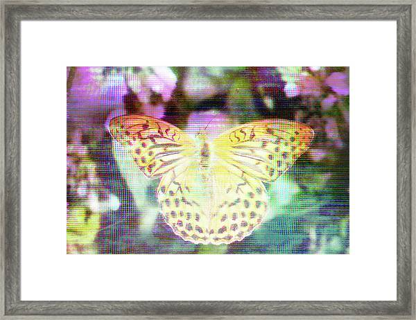 Electronic Wildlife  Framed Print
