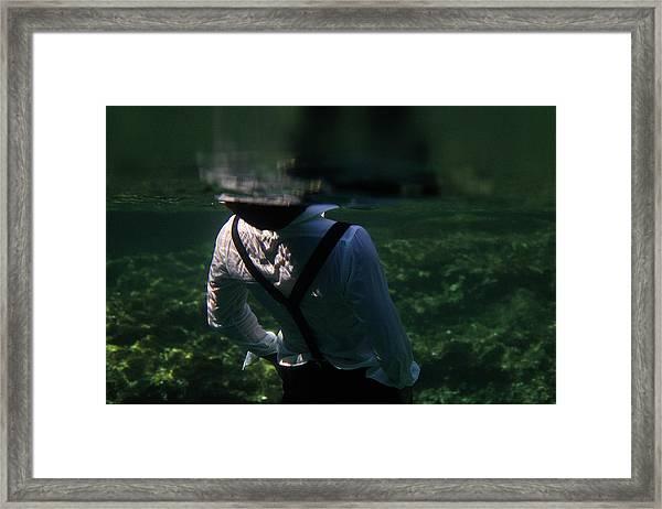 Elegancy Framed Print