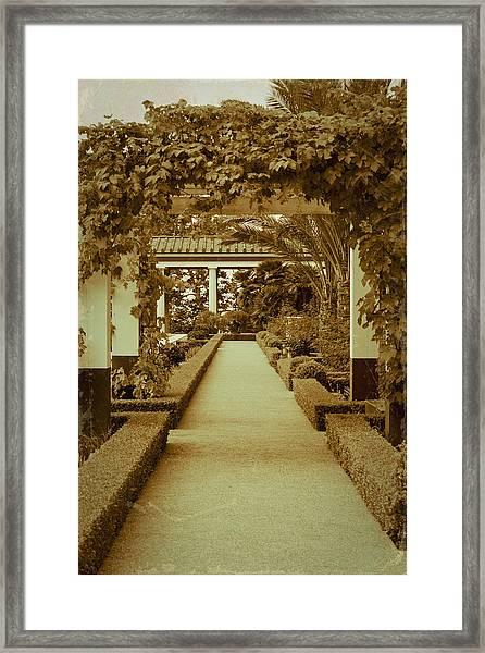 Elegant Aged Path Framed Print