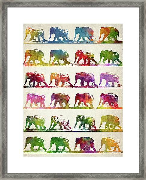 Elephant Animal Locomotion  Framed Print