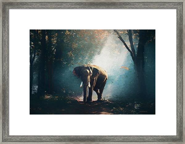 Elephant In The Mist - Painting Framed Print